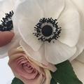 Atelier fleurs en sucre - Anémone