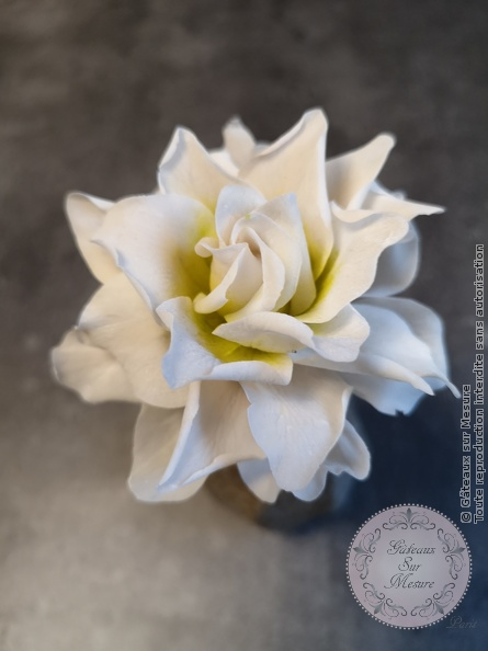 Cake Design - Gardenia rice paste lower - Gâteaux sur Mesure Paris - flower, gardenia, luxury, ricepaste, sugar, sugarart, sugarartist, sugarflower, sugarflowers, wedding, weddingdestination
